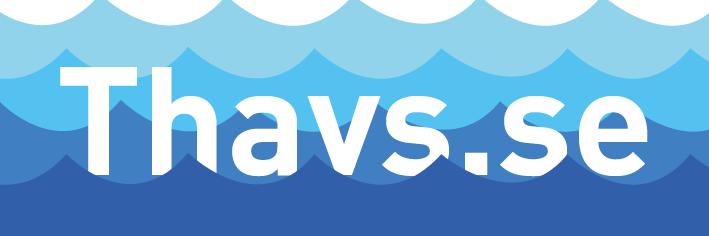 Thavs.se uthyrning av båtar och utrustning